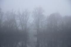 2014-01-12_um_14-18-25
