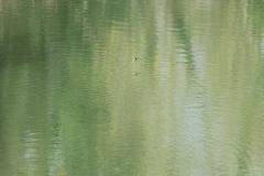 2014-03-08_um_12-46-48